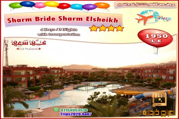 رحلات عيد الاضحي 2020 في شرم الشيخ